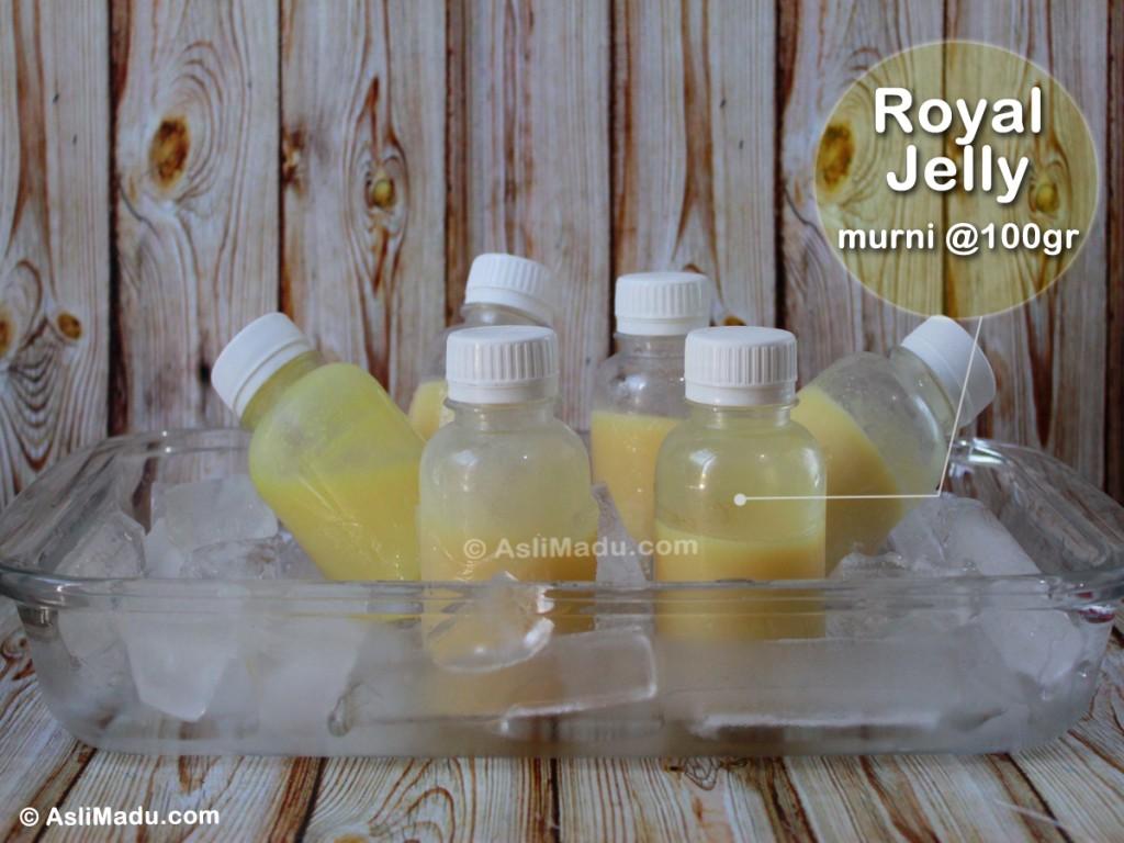 Khasiat manfaat Royal jelly
